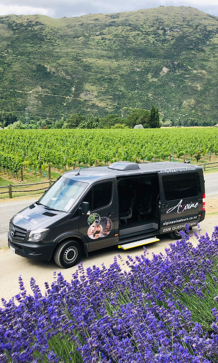 Alpine Wine Tours Mercedes Van