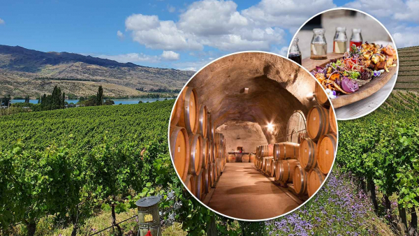 Central Otago and Valley of the Vines Wine Tour